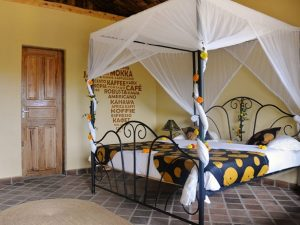 Arusha Accommodation - African View Lodge